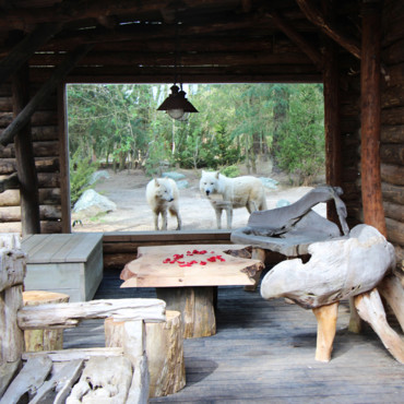 zoo-de-la-fleche-alaska-lodge