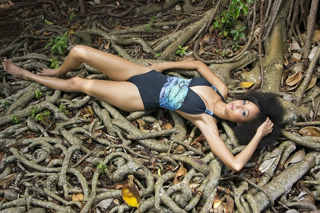 Miss Martinique 2012, concours Miss France 2013